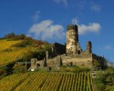 Castle ruins with vineyards